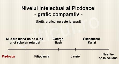 Nivelul intelectual al Pizdoacei